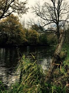 At the riverbank